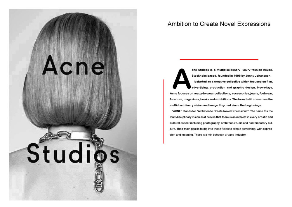 acne intro2.jpg