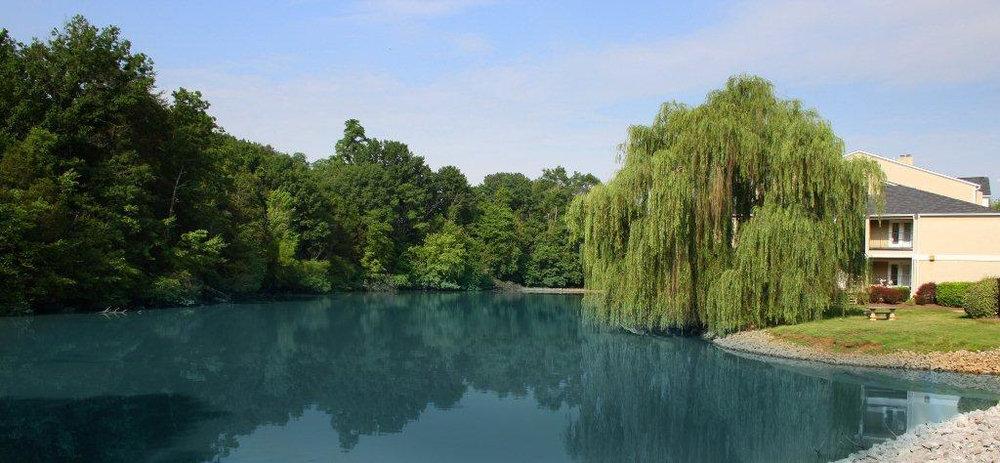 Lake edited.jpg