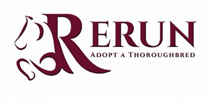 ReRun Thoroughbred Adoption