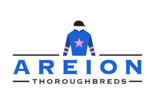AreionThoroughbreds-Logo-Silks-WEB.png