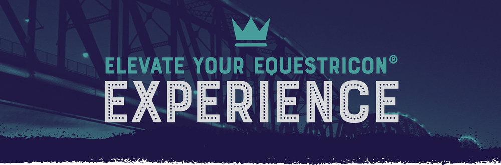 ElevateYourExperience.jpg