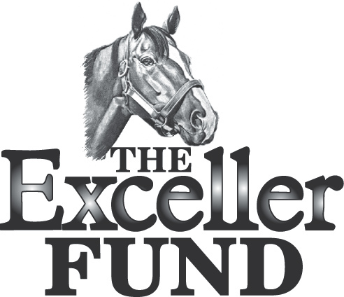 The Exceller Fund Logo.jpg