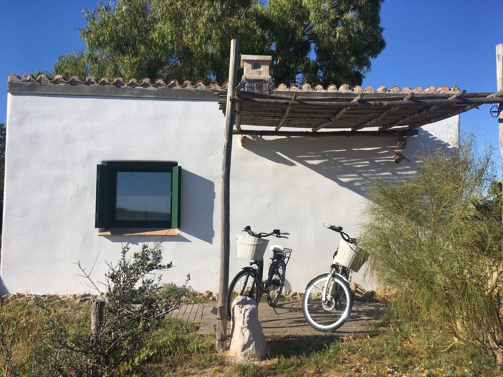 biciclette elettriche -