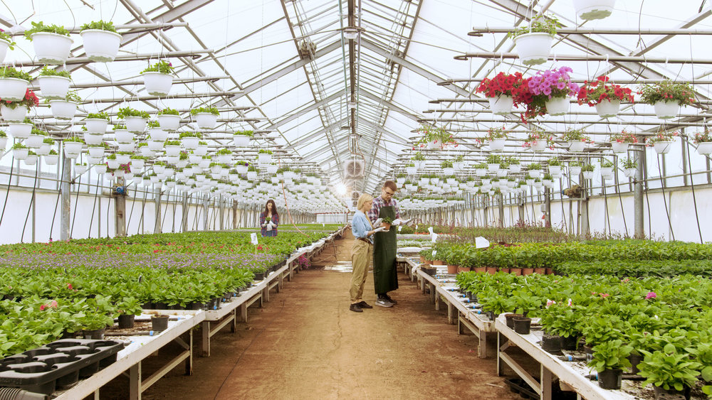 PPflanzenschutzberatung Düngeberatung Bioanbau