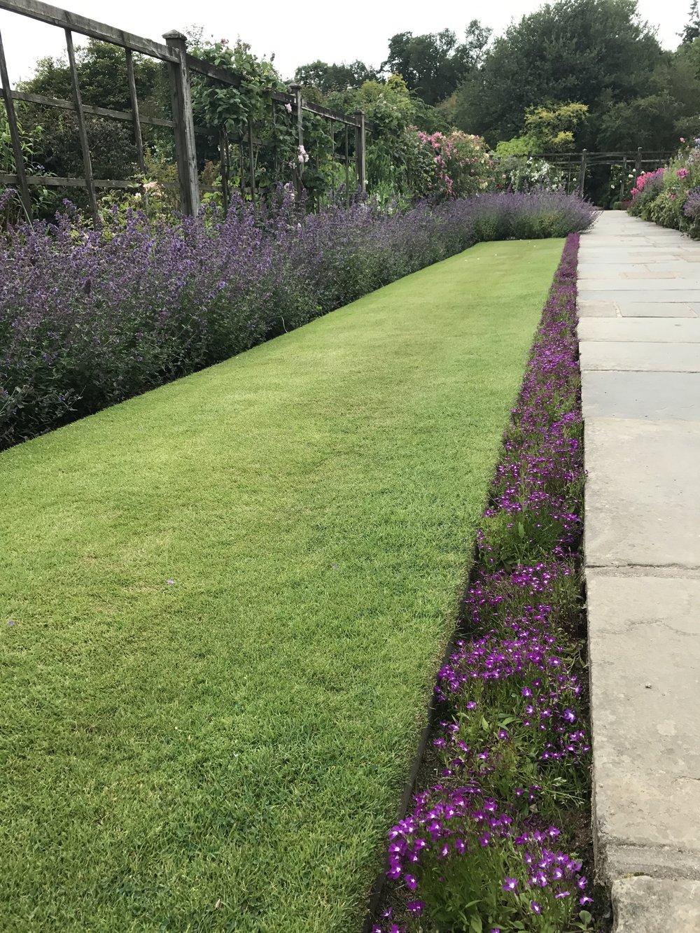 Galabau Gartenpflege Biodünger AMN Mack.png