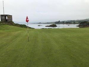 Golfrasen und Rasenpflege