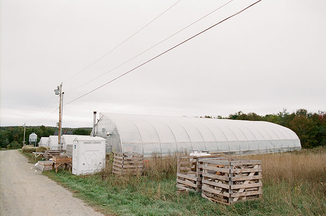organic farm in northern maine - Sarah Der Photography