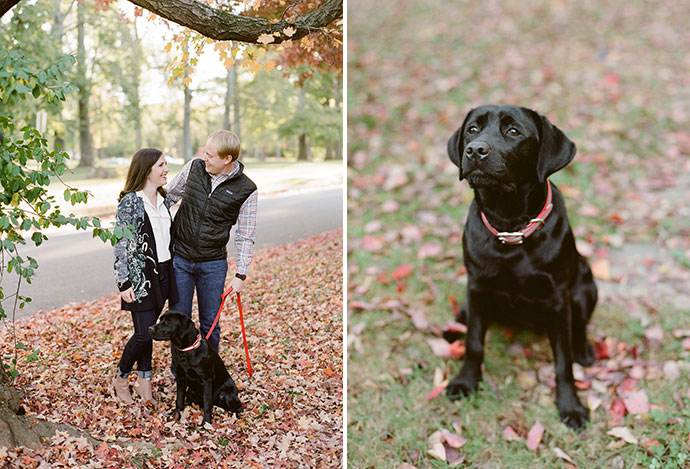 black lab puppy included in family photos