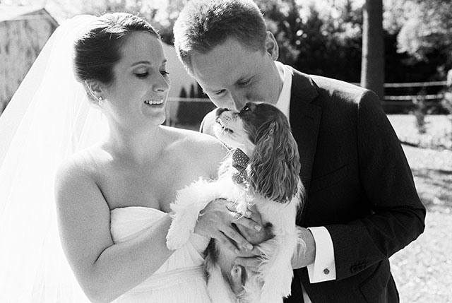 black and white film photo of couples with their spaniel puppy on their wedding day