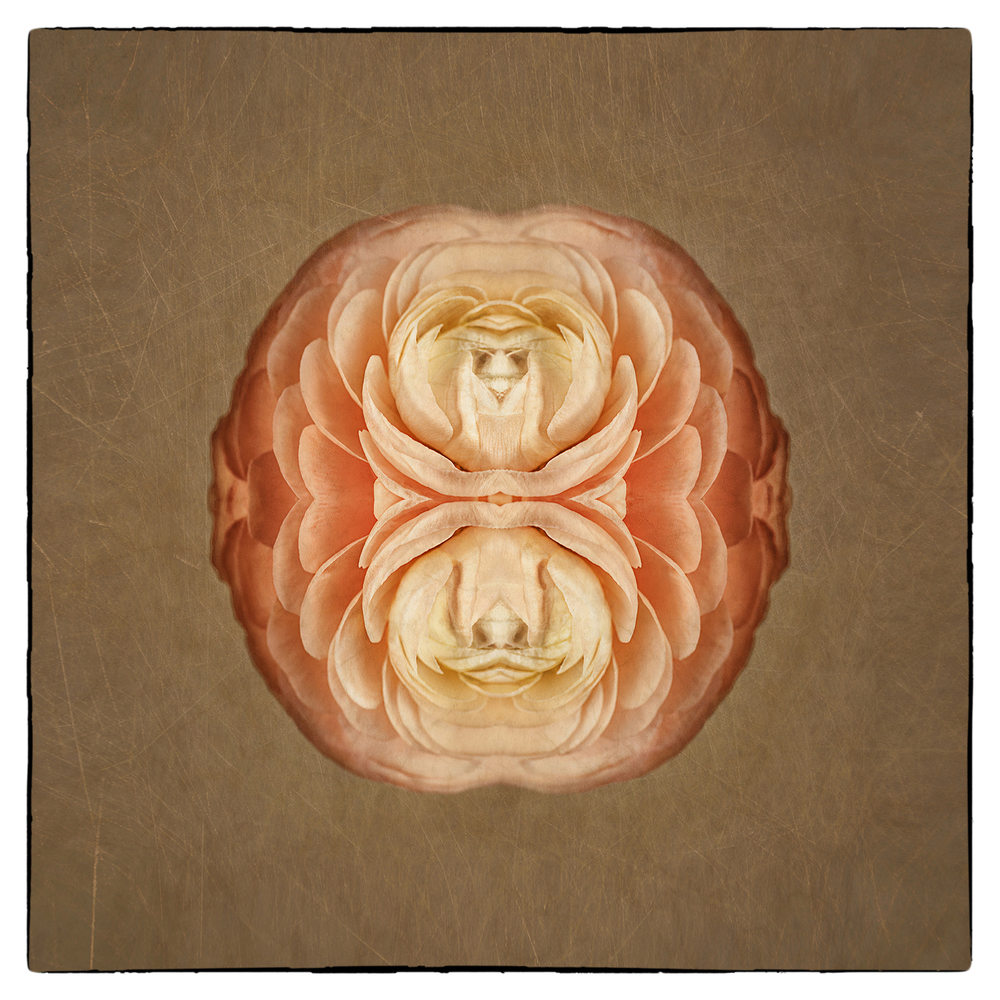 Two Faced Charmer.jpg