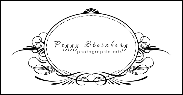 Peggy Steinberg Photographic Arts