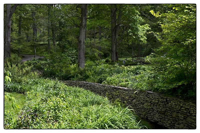 PSteinberg_Aullwood Garden.jpg