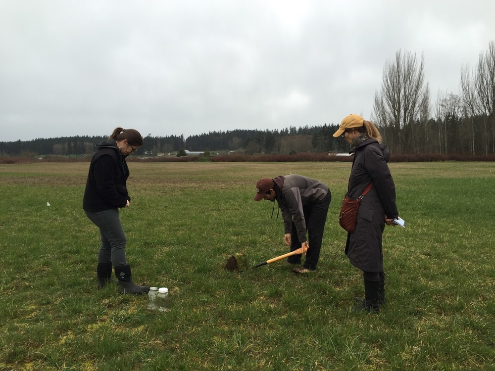 Kristin Ohlson, author of  The Soil Will Save Us , looks on as Training Manager, Jessica Babcock, and Assistant Program Director, Sebastian Aguilar, take a look at the soil they'll be working with at the Sher Farm. Everyone is looking forward to incorporating climate/carbon-aware farming methods as the ground is prepared for cover crops this year.