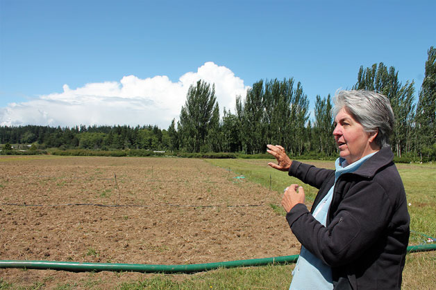 Organic Farm School Director Judy Feldman shows off the farm school's new home. Their new farmland is located at an old horse racing track.   — Image Credit: Kyle Jensen / The Record