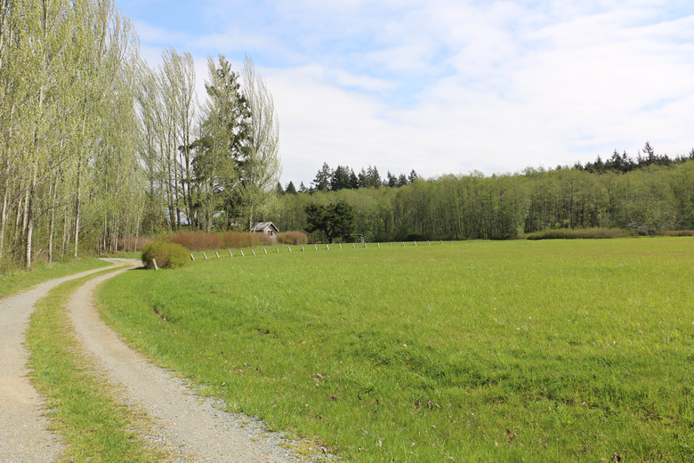 This sunny and expansive Maxwelton Valley property will be the new home of Whidbey Island's Organic Farm School, thanks to the generosity of Ron and Eva Sher. (Courtesy Judy Feldman)