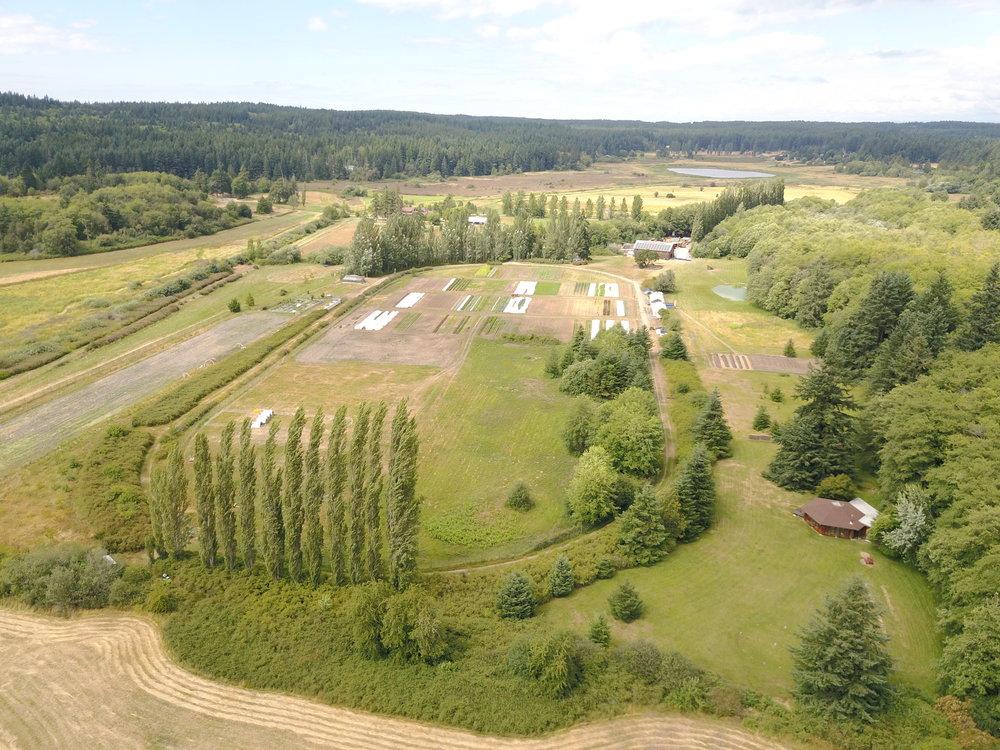 aldermarsh aerial copy.jpg