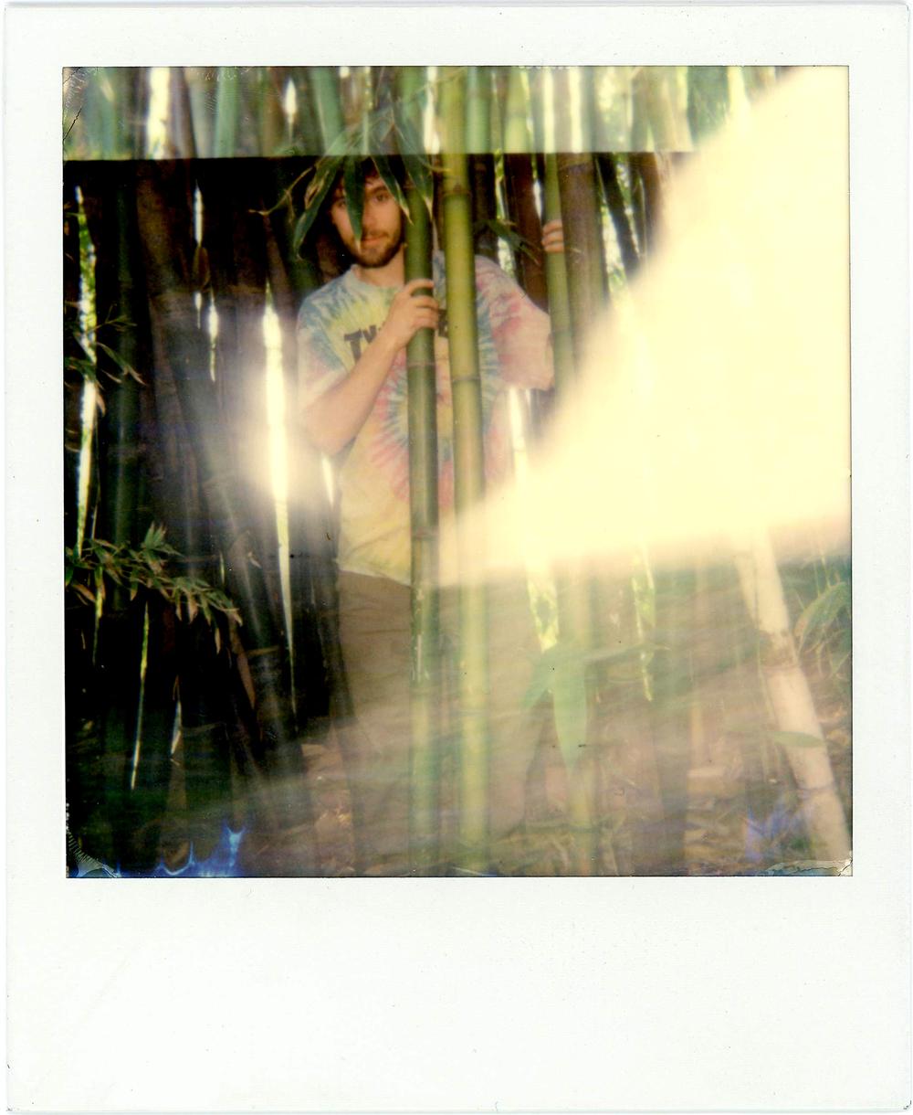 Polaroid003.jpg