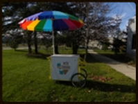 Ice Cream Cart with multi-color Umbrella 7 cu ft $135.00