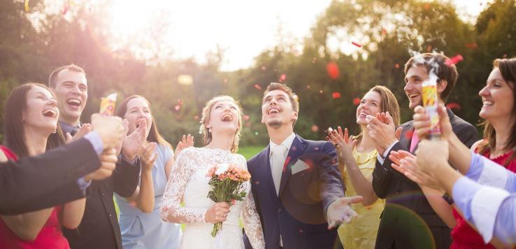 wedding planner in livonia mi.jpg