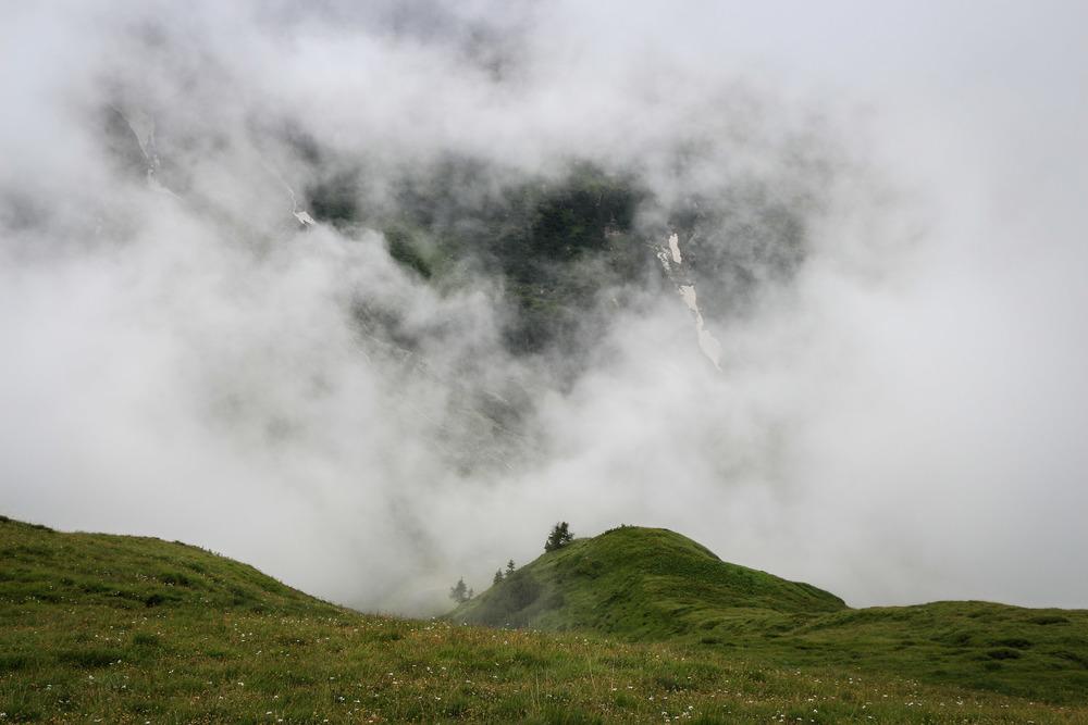 20130809_03268 Auf der Alp.jpg