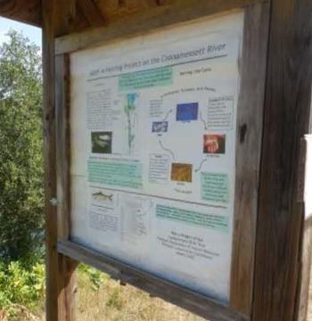 Coonamessett-Heritage-Trailway-map.jpg