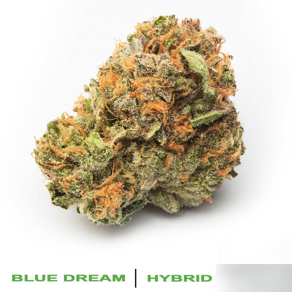 23.0% THC .04% CBD