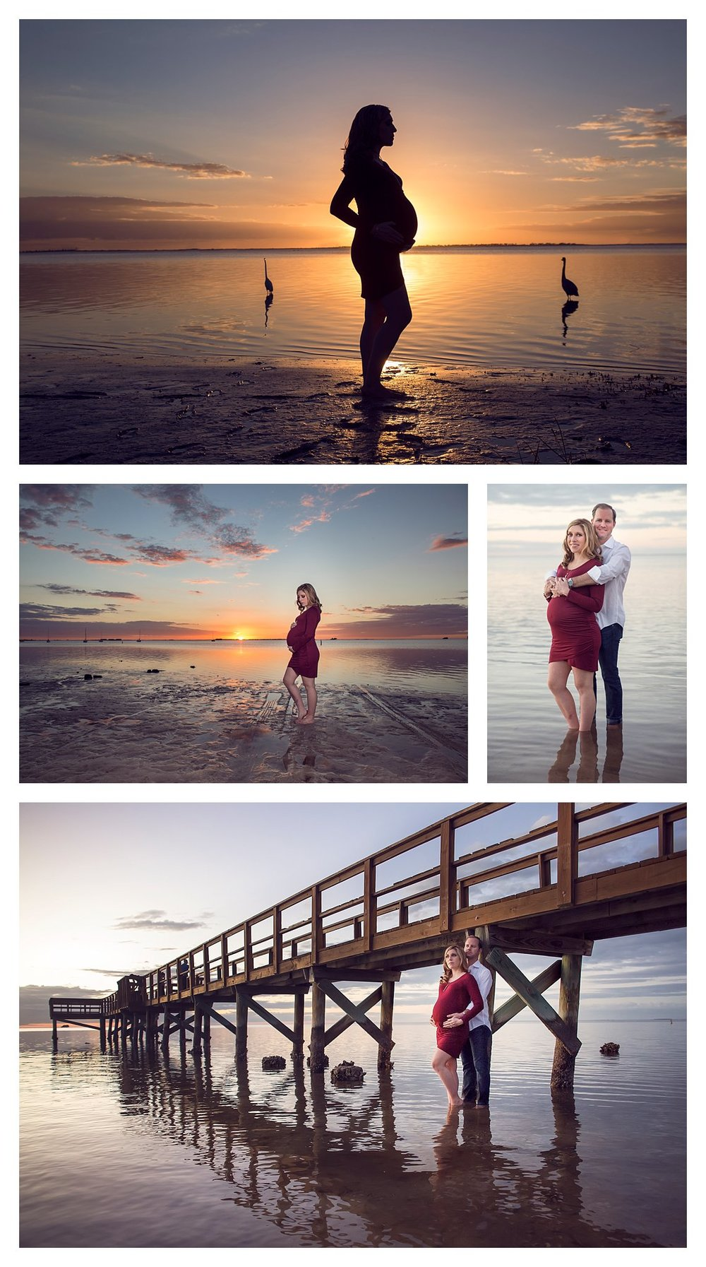Tampa maternity photographer