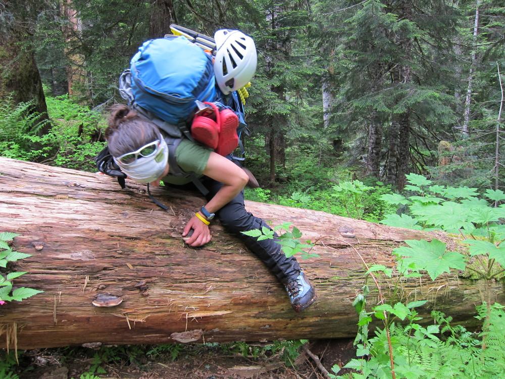 Just a little log hopping.
