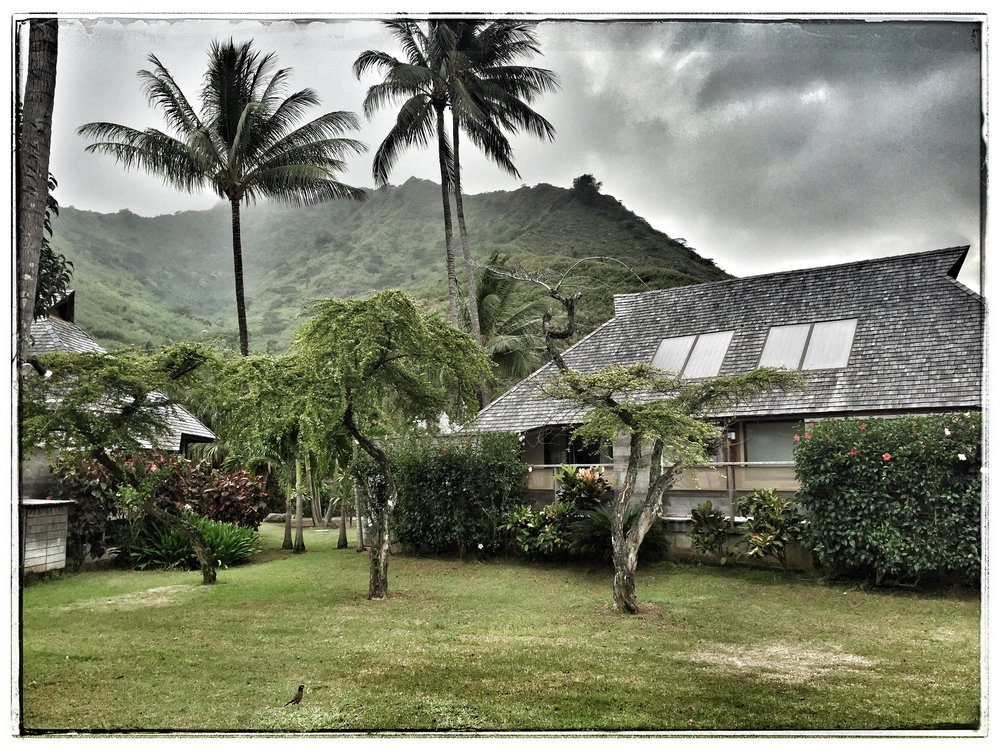 View of the grounds at the Hilton, Moorea.  The steep mountain in the background is Mt. Rotui.