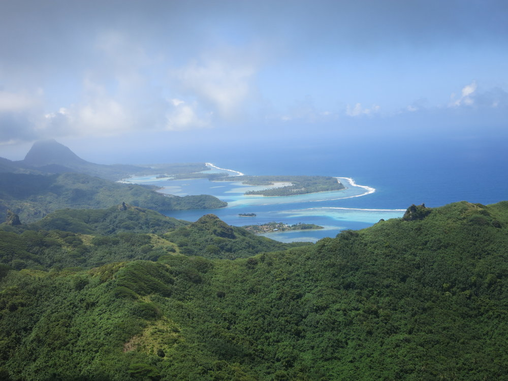 View from our climb of Pohue Rahi.