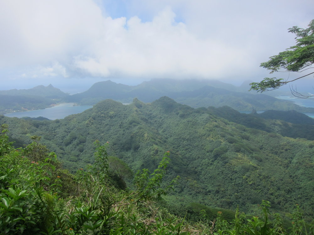View from the Summit of Mount Pohue Rahi.