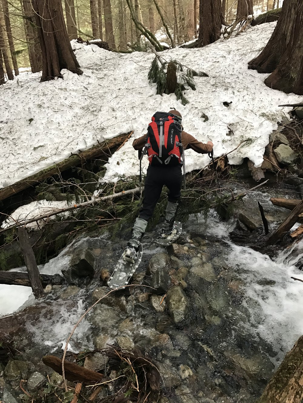 Extreme snowshoeing