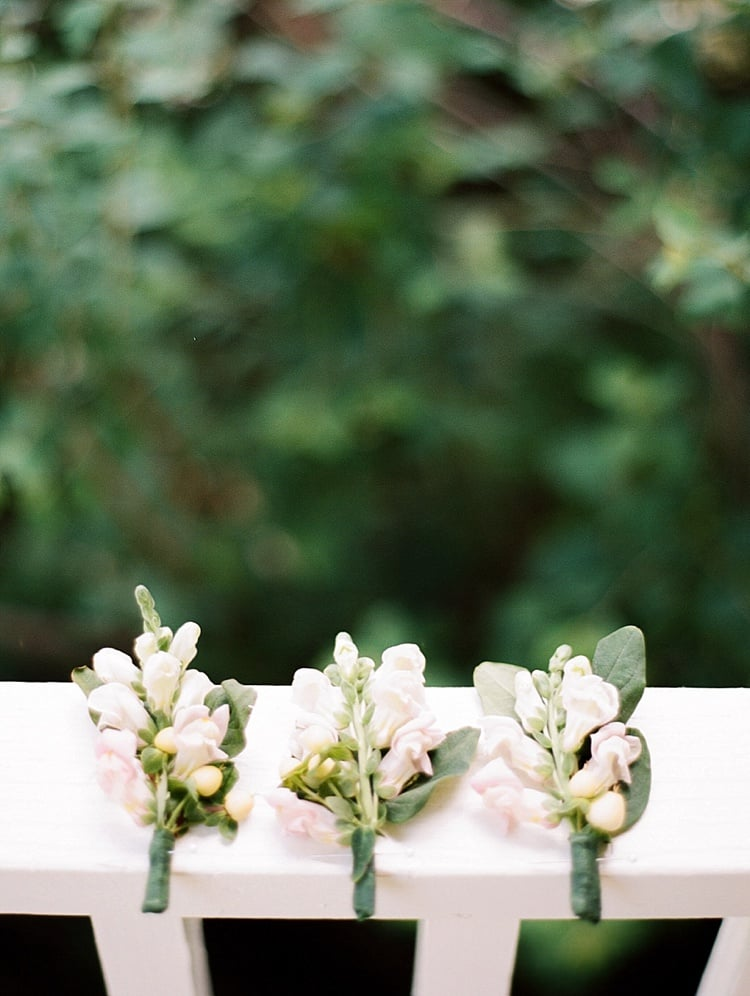 View More: http://rutheileenphotography.pass.us/plutonmeredith