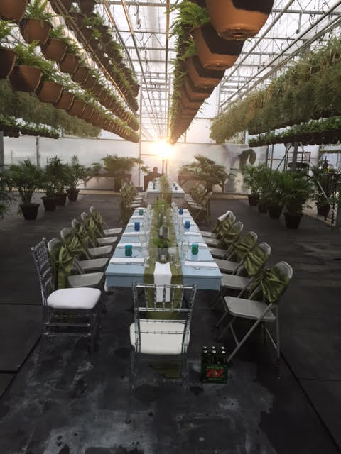 pop up restaruant KW greenhouse