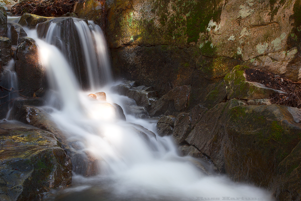 Spring runoff creates many intimate landscapes along the aptly-named Mossy Cascade trail.