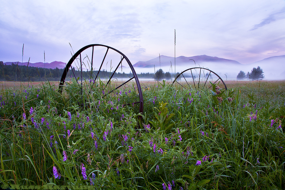 A old rusted farm vehicle in a meadow in Wilmington at sunrise. The Sentinel Range is in the background.