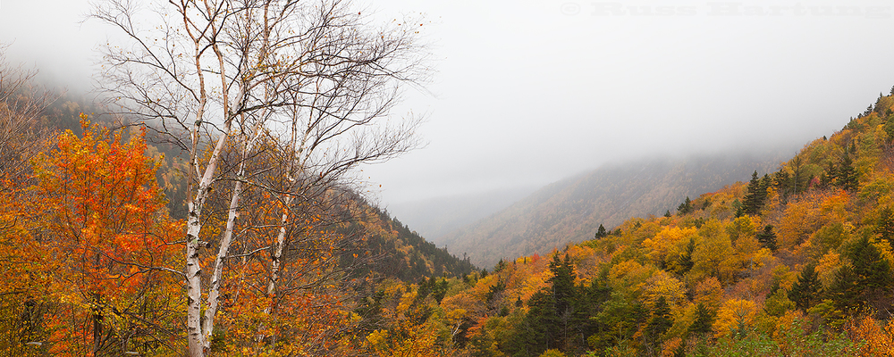 Misty afternoon during peak foliage season along Route 302 in the White Mountains of New Hampshire.