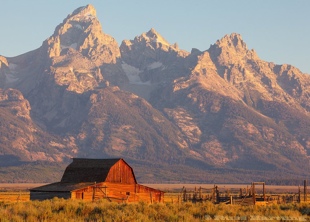 The iconic Mormon Barn at sunrise with Grand Teton in the background.