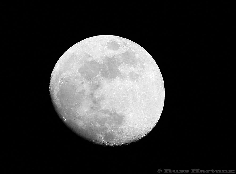 Gibbous moon.