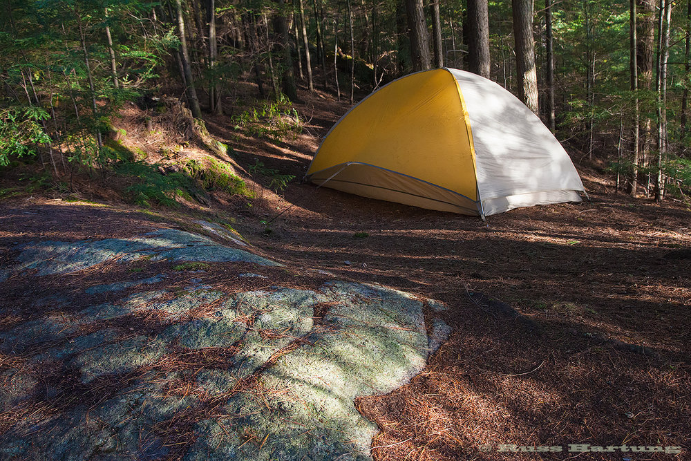 Dappled light at my campsite on Upper Saranac Lake.