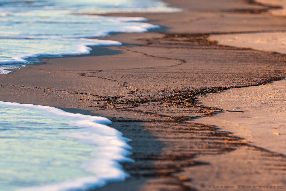 I liked the pattern made by the waves on this beach in Hilton Head, South Carolina.