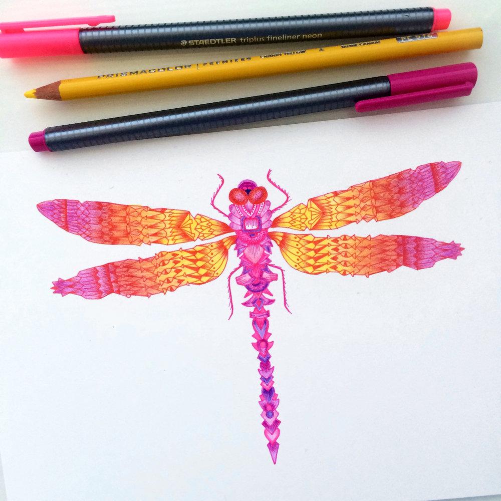 Pink Dragonfly.JPG