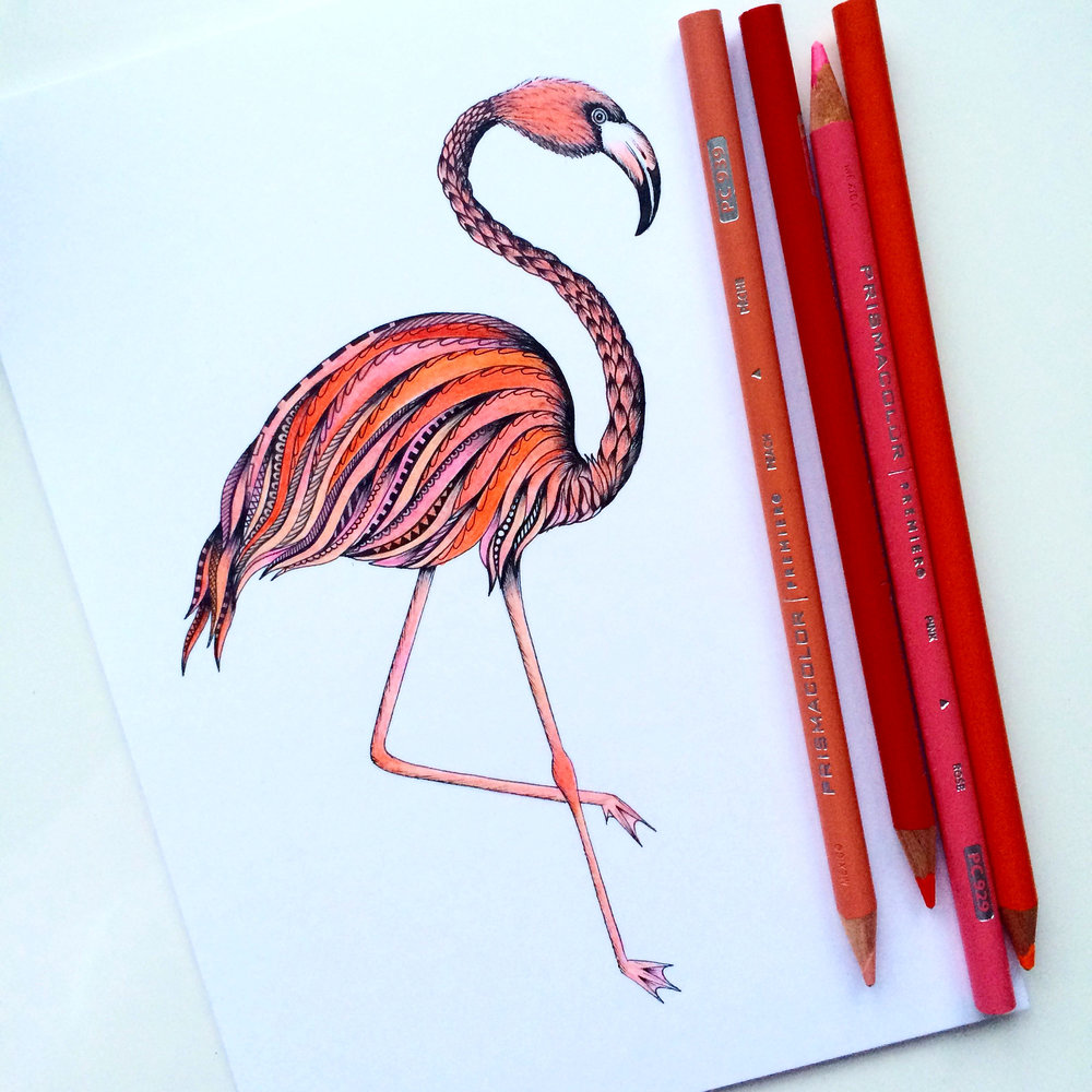 Flamingo.jpeg