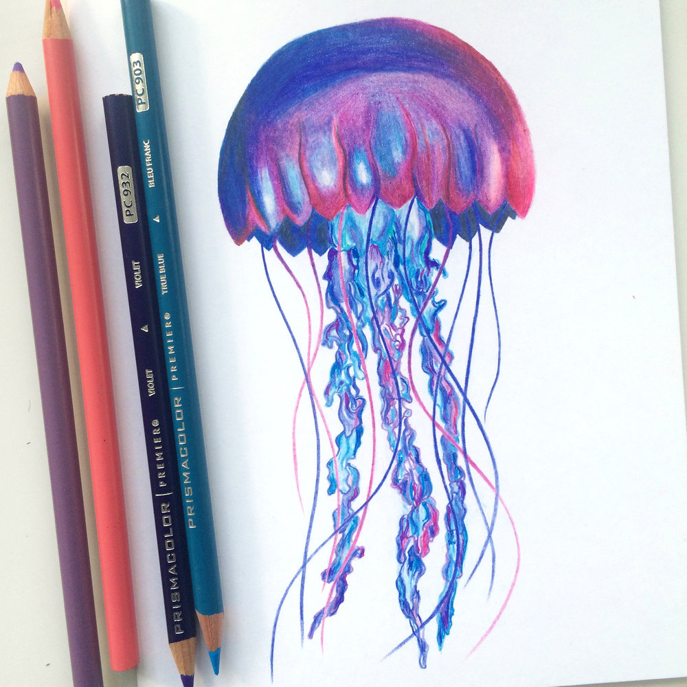 Jellyfish.jpeg