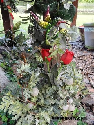 hummingbird roses.jpg
