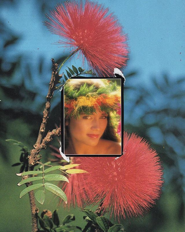 THINKING OF YOU ~ #analogcollage #maui #hawaii