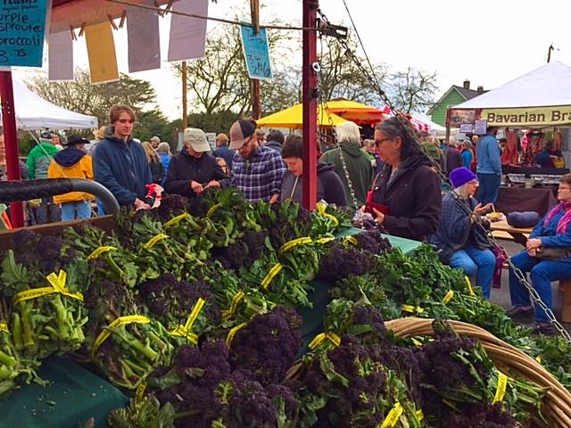 opening day veg.jpg