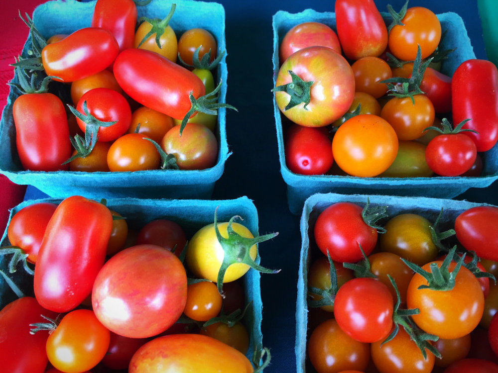 Serendipity Farm tomatoes!