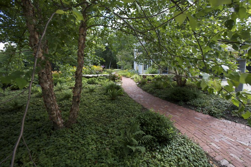 Long Meadow (2)(1).jpg