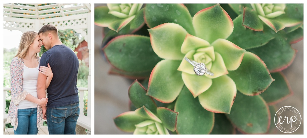 Engagement ring in a succulent at an engagement shoot at Myrtle Creek.